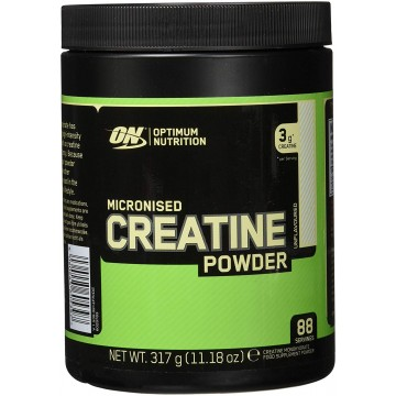 CREATINE POWDER ON 317GR