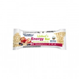 NATURE ENERGY BAR 60G