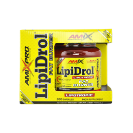 LIPIDROL FAT BURNER 300CAPS