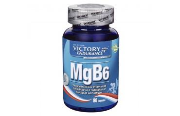 MG B6